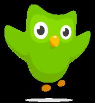 owl-happy2x